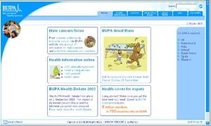 Website Design B